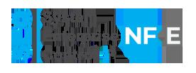 nfe-icon